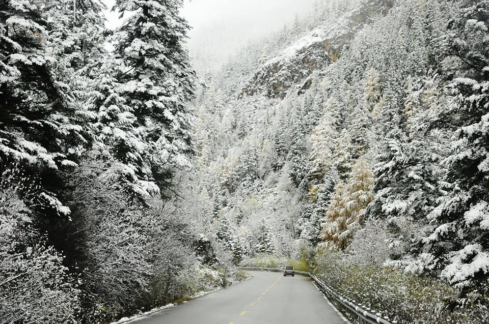 Tuyết phủ trắng Sa Pa vào cuối năm 2013.