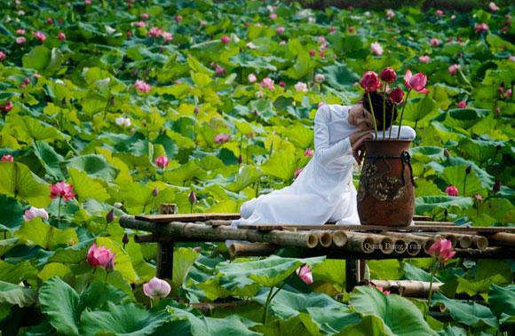 Chụp ảnh sen với áo dài trắng - quần trắng