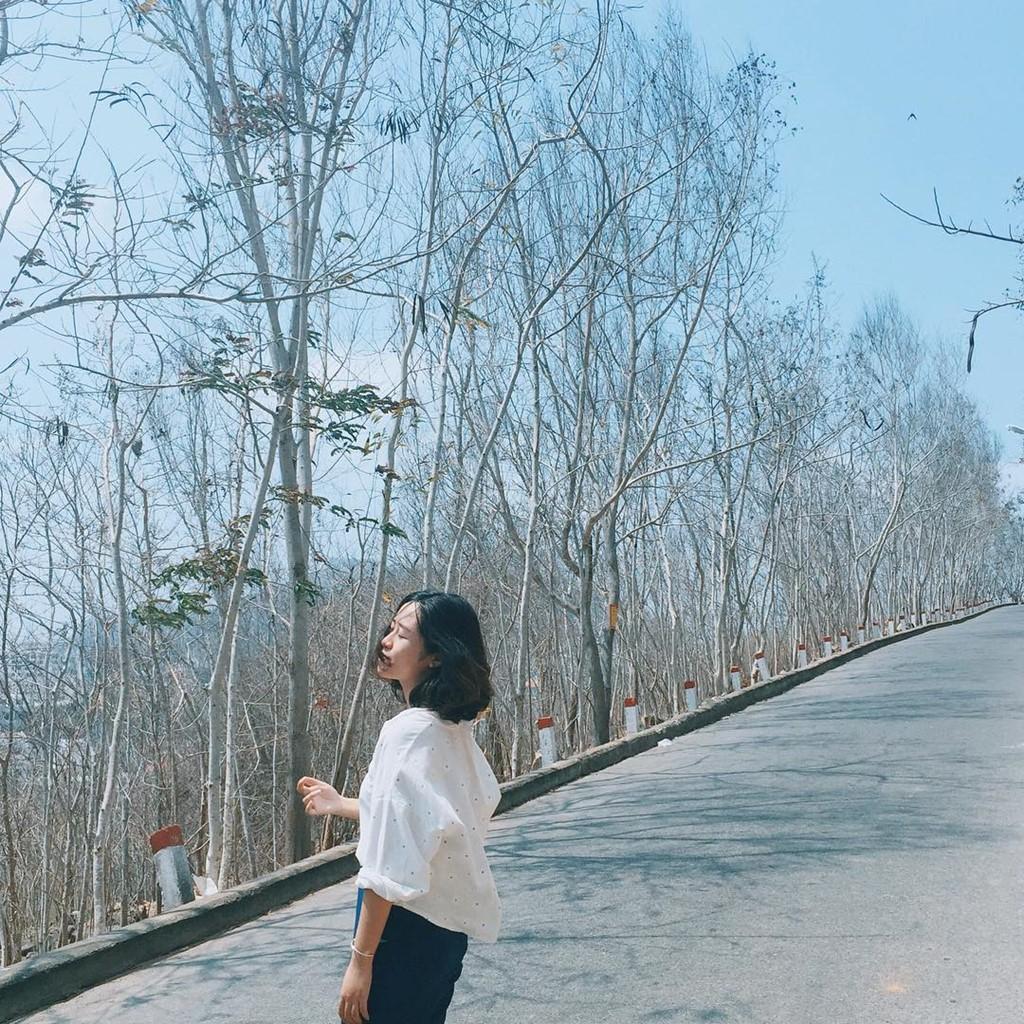 Con đường theo chạy bờ biển Vũng Tàu là đường lên núi con Heo, núi Nhỏ, núi Lớn… có khung cảnh tuyệt đẹp, sẽ giúp bạn có được những tấm hình lung linh bất ngờ.
